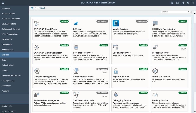 SAP HANA Cloud Platform controls