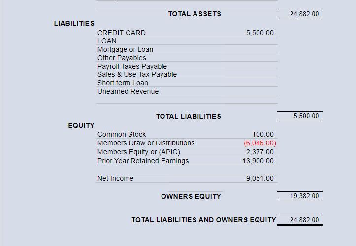 Big E-Z Bookkeeping Software - Balance Sheet