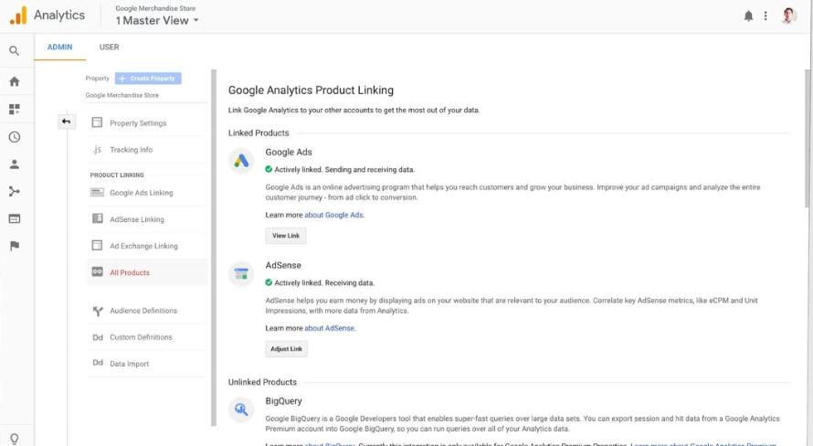 Google Analytics data access