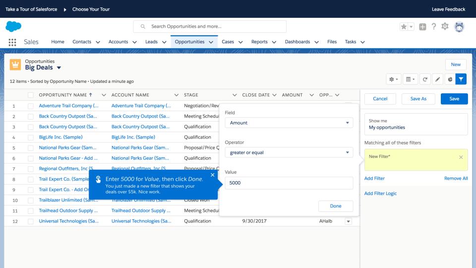 Salesforce Essentials Software - Filter leads