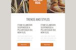 FreshMail screenshot: Beatus Newsletter Template