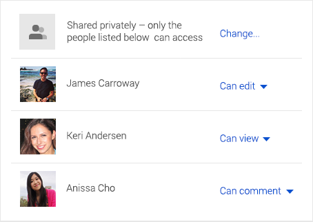 Manage user permissions to control who can view, comment, or edit files
