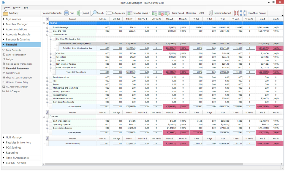 Buz Club Manager Software - Buz Club Manager financial statements