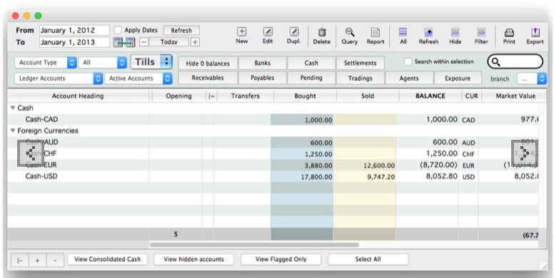 CurrencyXchanger screenshot: CurrencyXchanger sub-ledger accounts screenshot