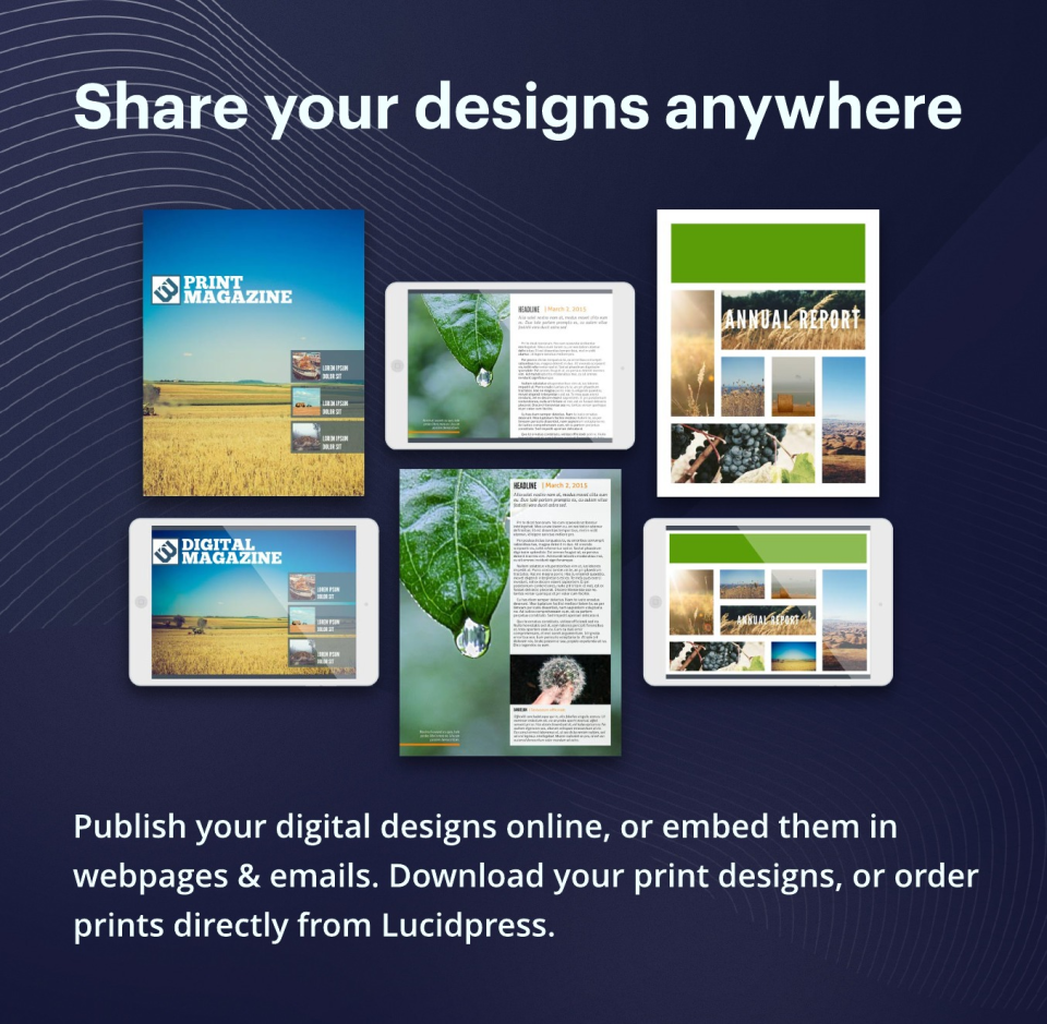Lucidpress Software - 5