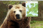 TunnelBear screenshot: TunnelBear for Mac