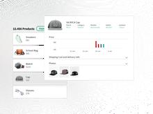 Netrivals Software - Market Research