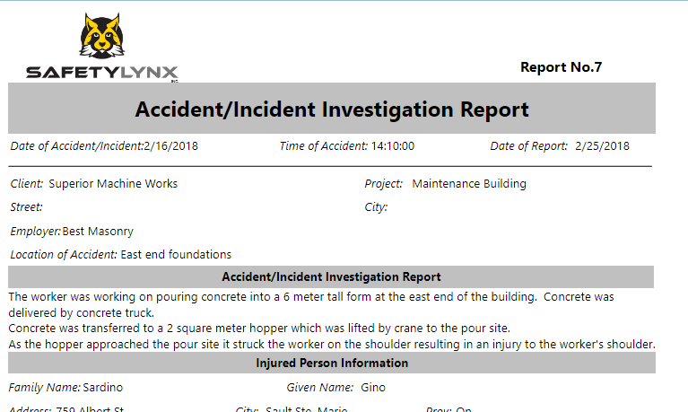 SafetyLynx Software - Accident report