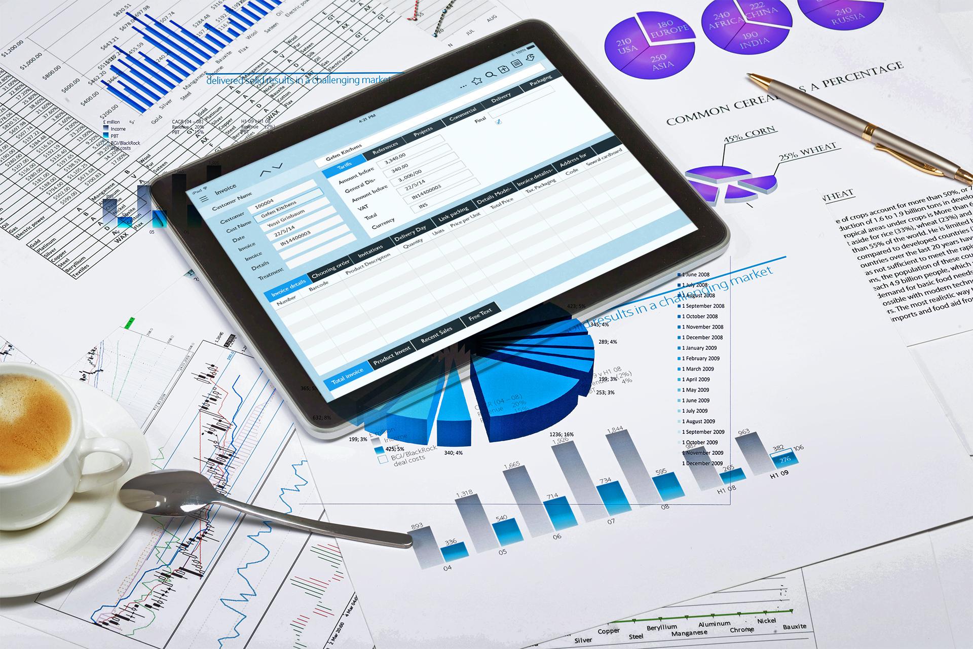Priority Software - BI (Business Intelligence) Module