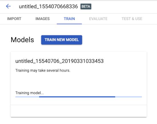 Vision AI new model training
