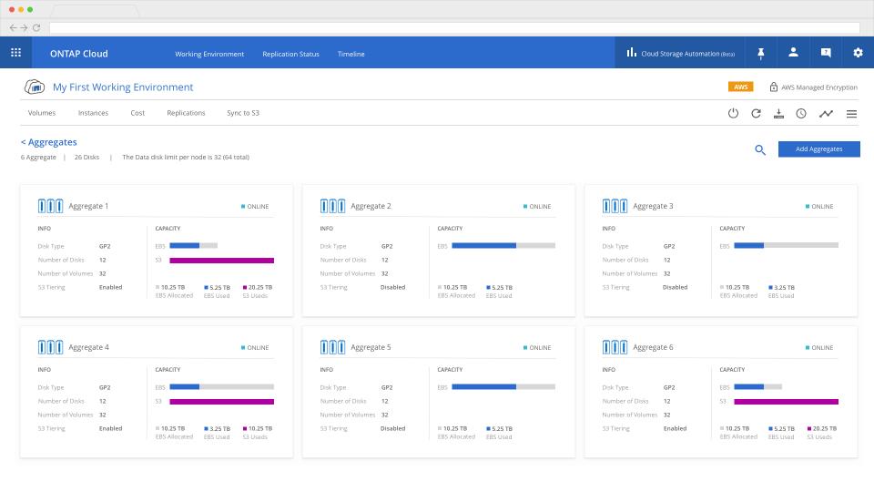 Cloud Volumes ONTAP screenshot: Cloud Volumes ONTAP aggregator