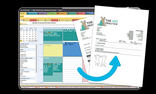 ezyVet Software - Clinical Summaries