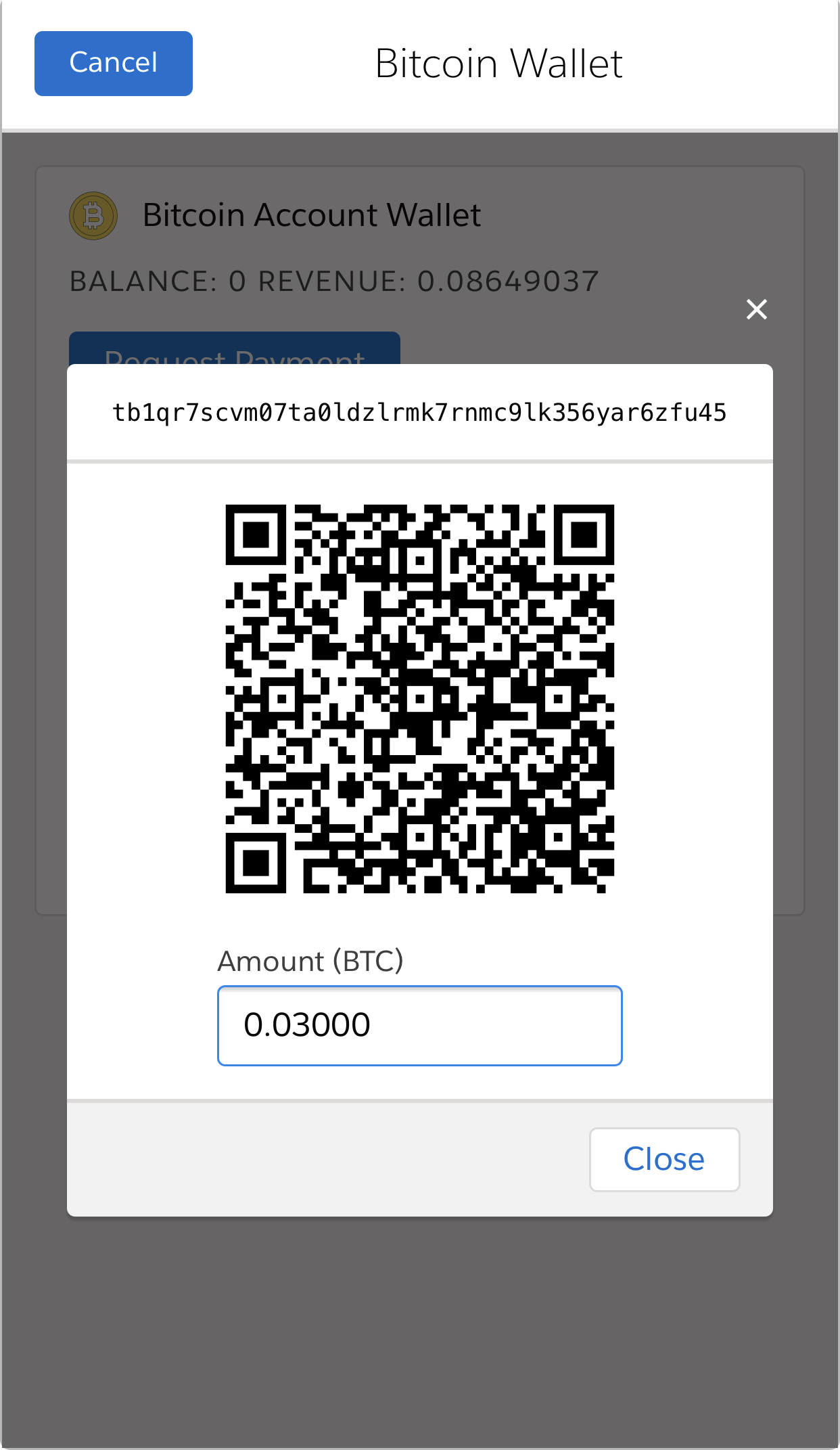 QR code payment request on mobile (Salesforce1)