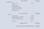 Big E-Z Bookkeeping Screenshot: Balance Sheet