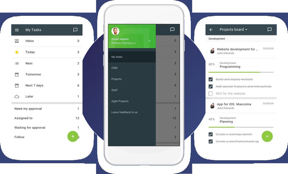 Flowlu Mobile application