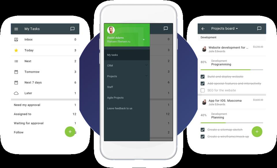 Flowlu Software - Flowlu Mobile application