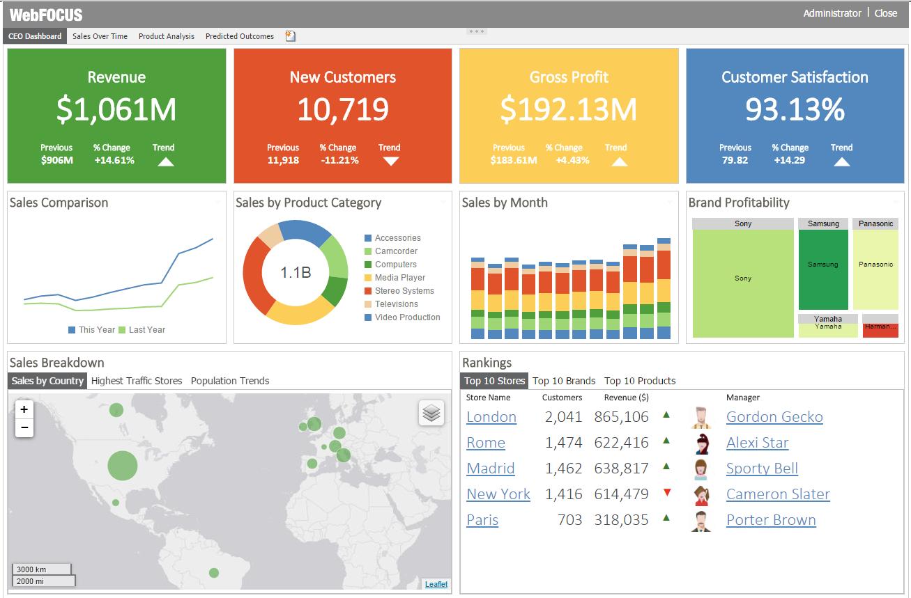 ibi Software - CEO dashboard
