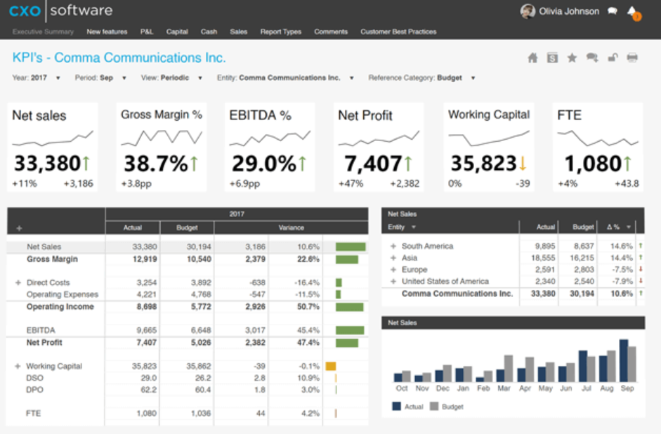 CXO Software financial intelligence
