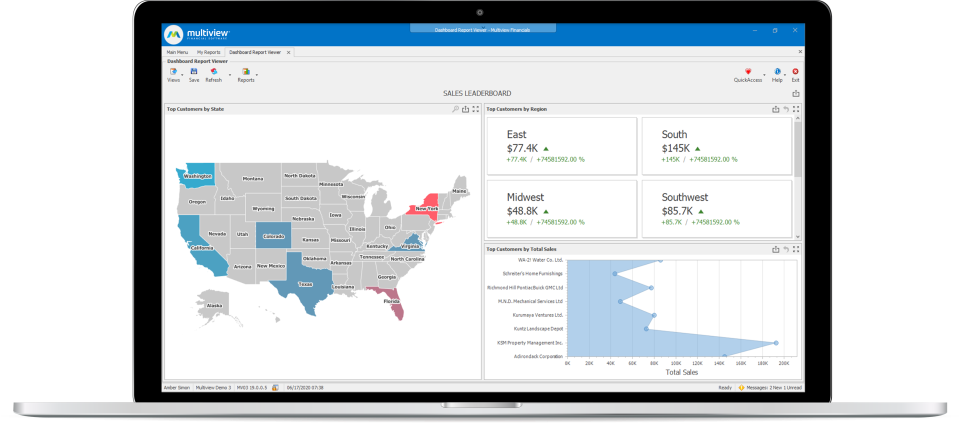 Multiview ERP Software - Customers by State