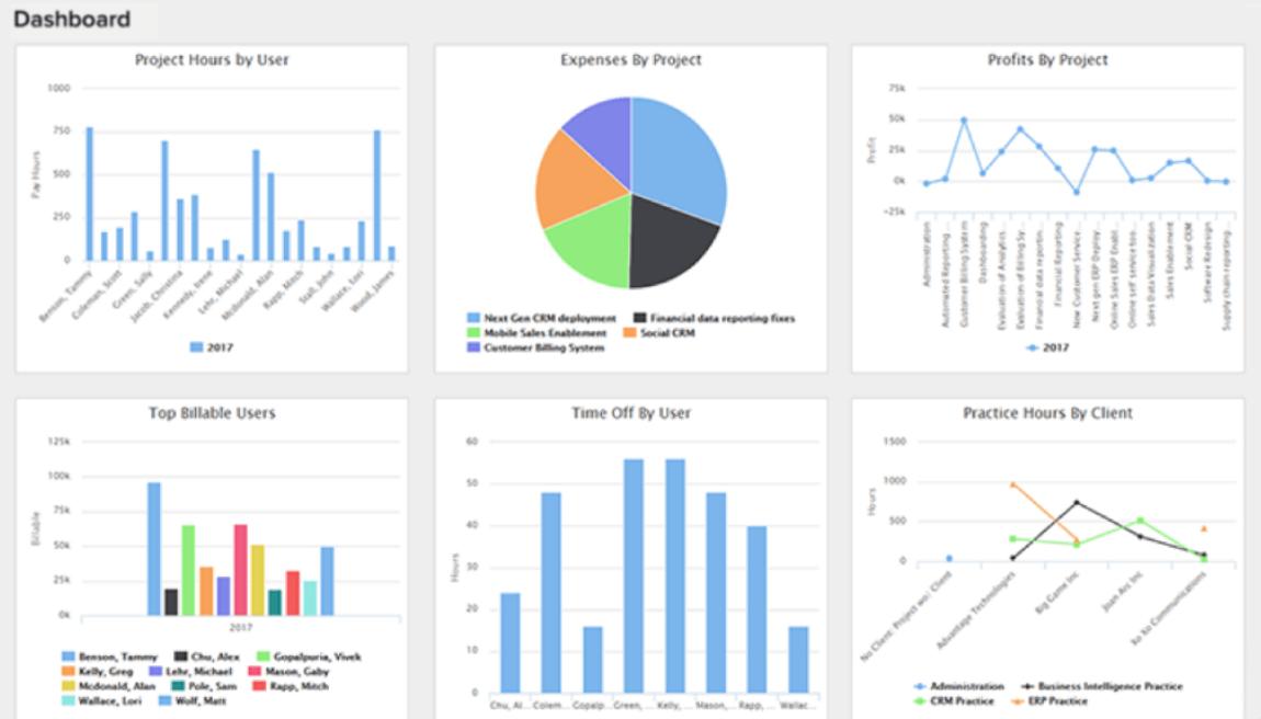 Replicon Software - Replicon analytics