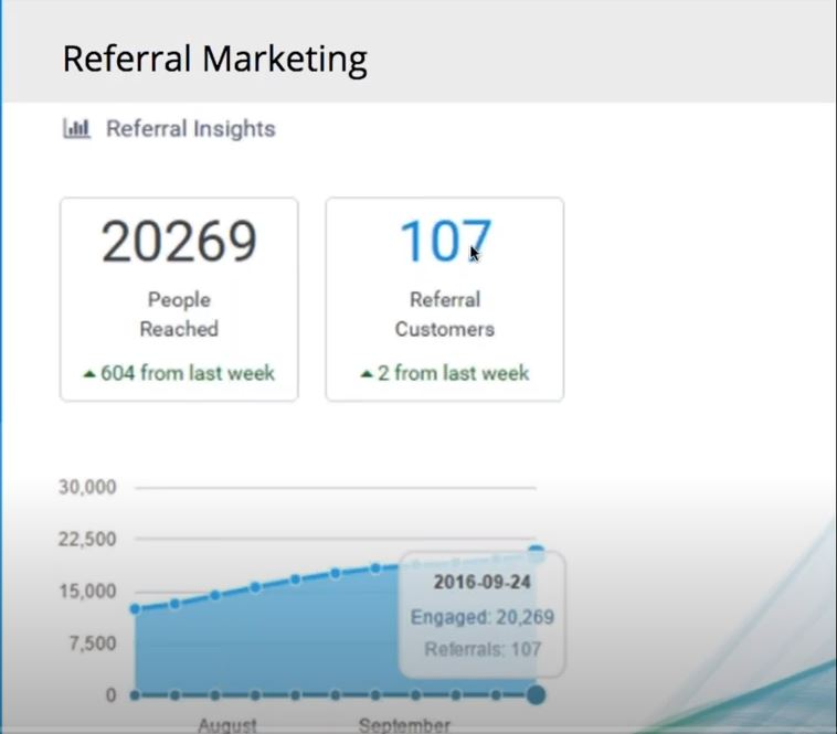 Referrizer referral insights