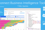 SalesDirector.ai screenshot: Access and visualize insights in your favorite business intelligence tool of choice