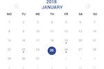 LifeCubby screenshot: LifeCubby Family App Calendar