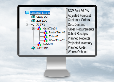 SCP 4.0 Software - Demand Planning