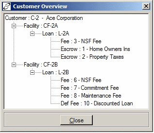 Customer overview