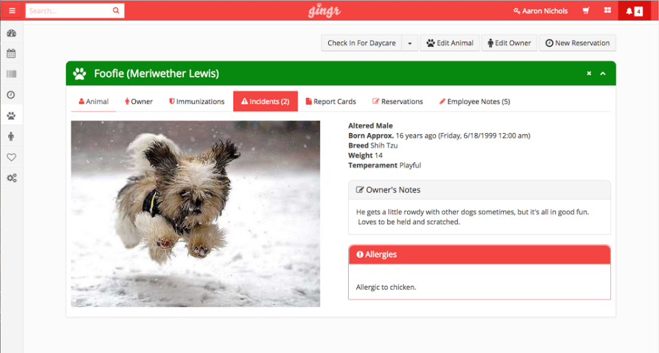 Create profiles for dogs including the most important information for the business