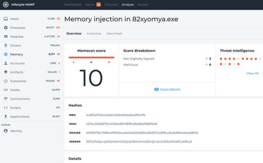 Infocyte memory analysis