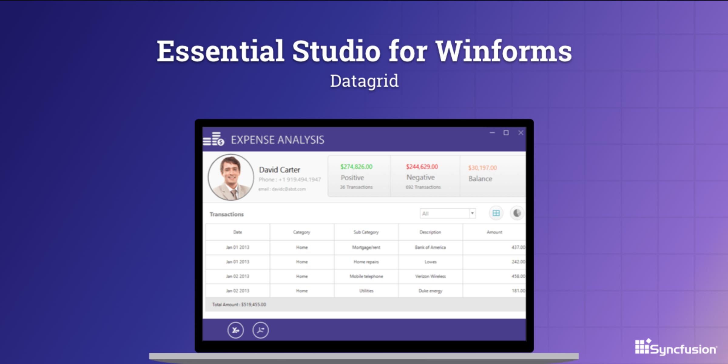 Essential Studio for Winforms