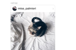 Instagram screenshot: Direct messages can include photos, videos, text, emojis, hashtags, locations, profiles, and more