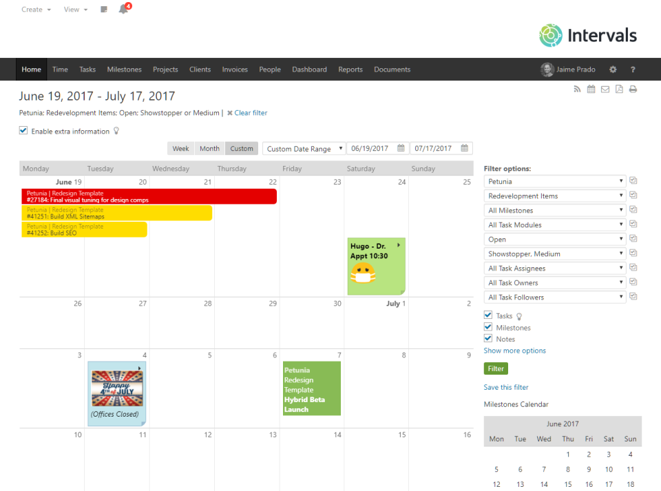 Intervals Software - Home page calendar