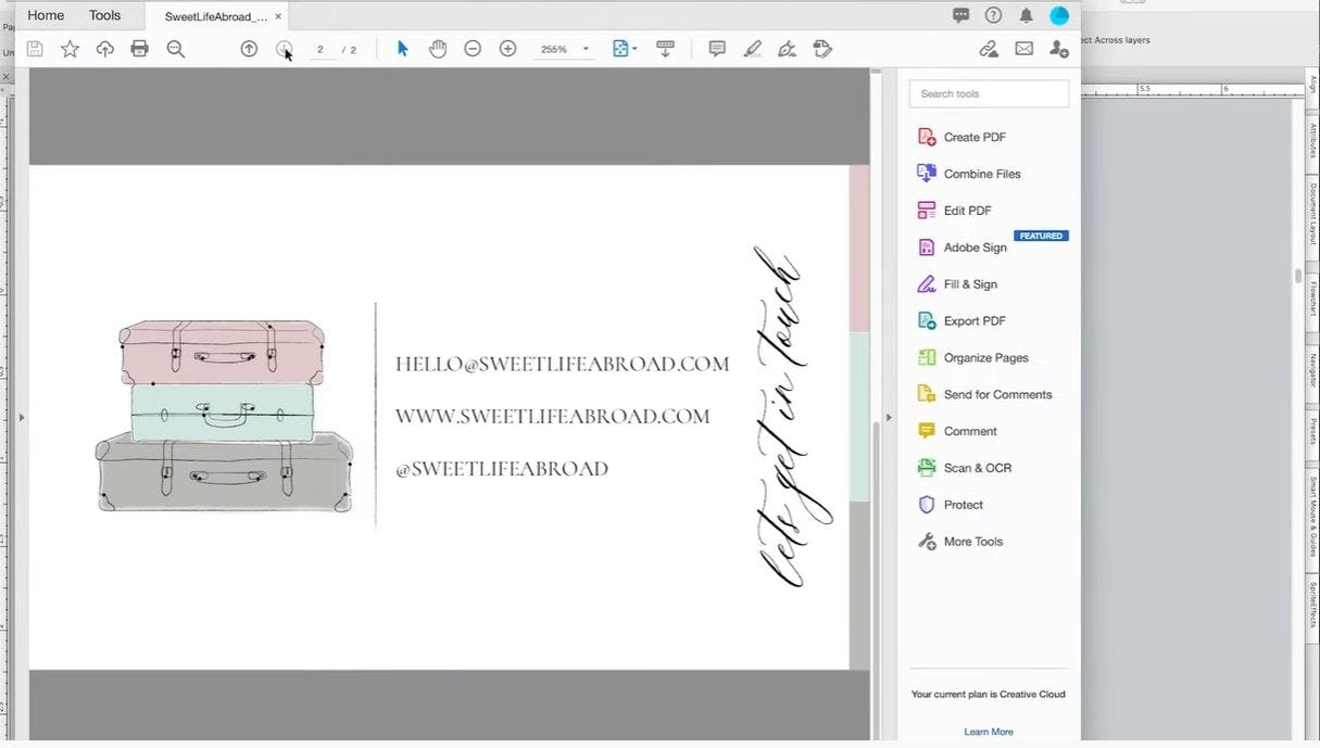 Canvas X Draw Software - 2
