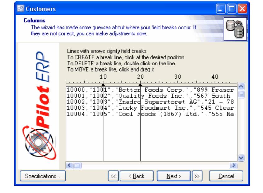 Pilot ERP Software - 2