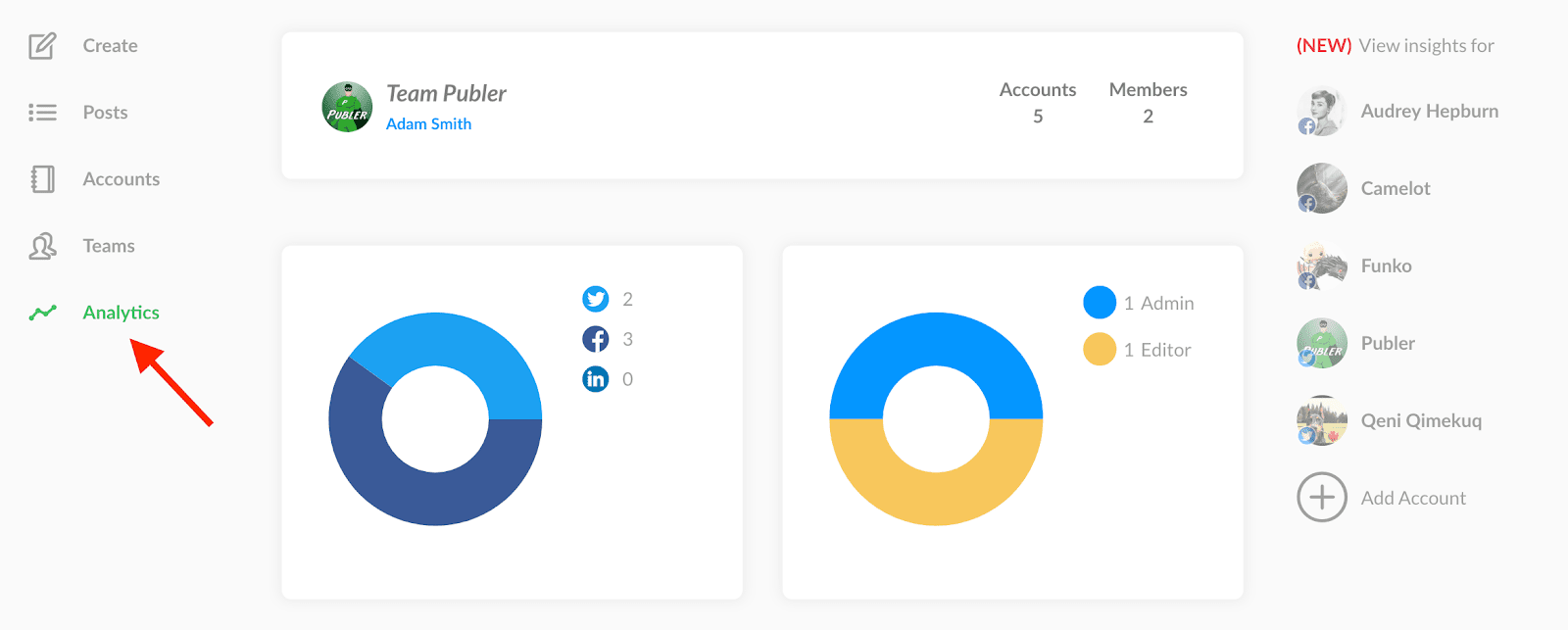 Publer analytics