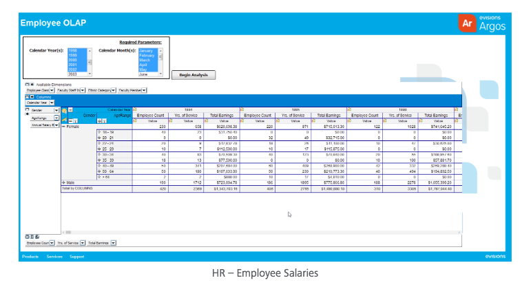 An OLAP Cube (On-Line  Analytical Processing) example within Argos, showing demo data for Employee Salaries