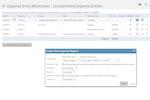 Captura de pantalla de Project Insight: Expense Tracking Worksheet