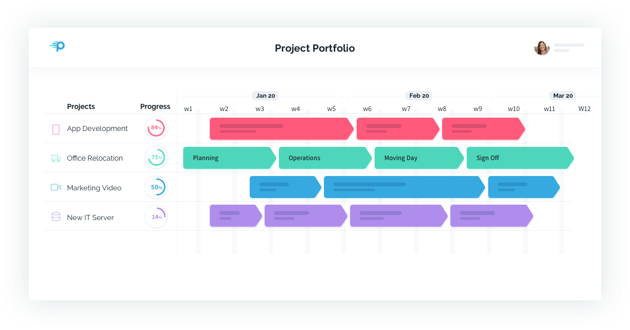 Project Portfolio View