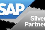 NLSQL screenshot: SAP Partner