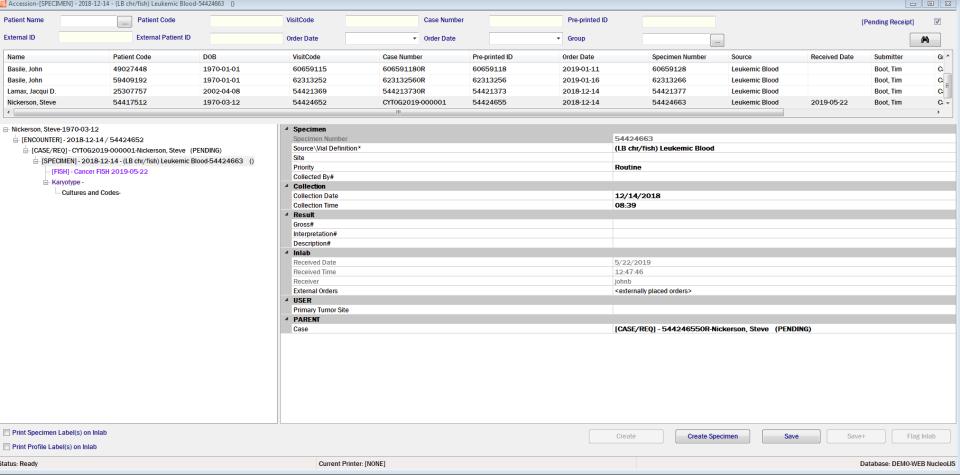 Psyche Systems patient data management screenshot