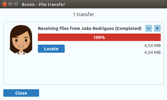 Brosix screenshot: Brosix received file transfer screenshot