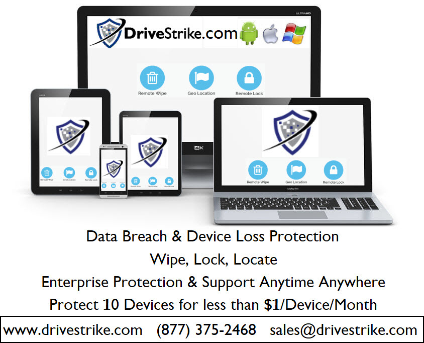 DriveStrike Software - 5