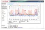 Oracle Utilities screenshot: Oracle Utilities usage statistics