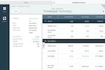 Aderant screenshot: Aderant timekeeper summary