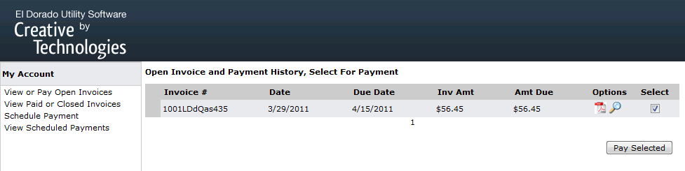 Invoice and payment history