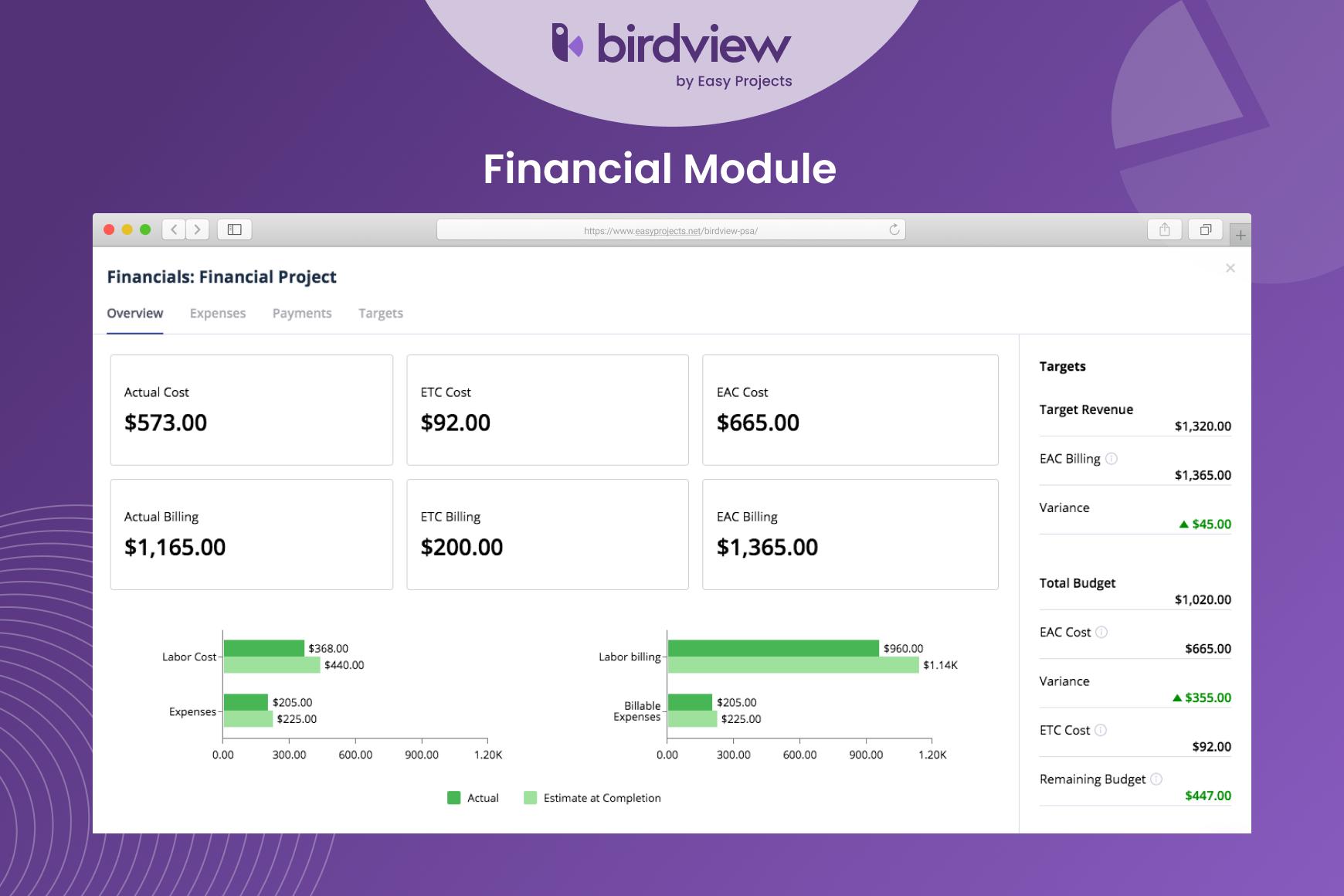 Birdview PSA - Financial Module