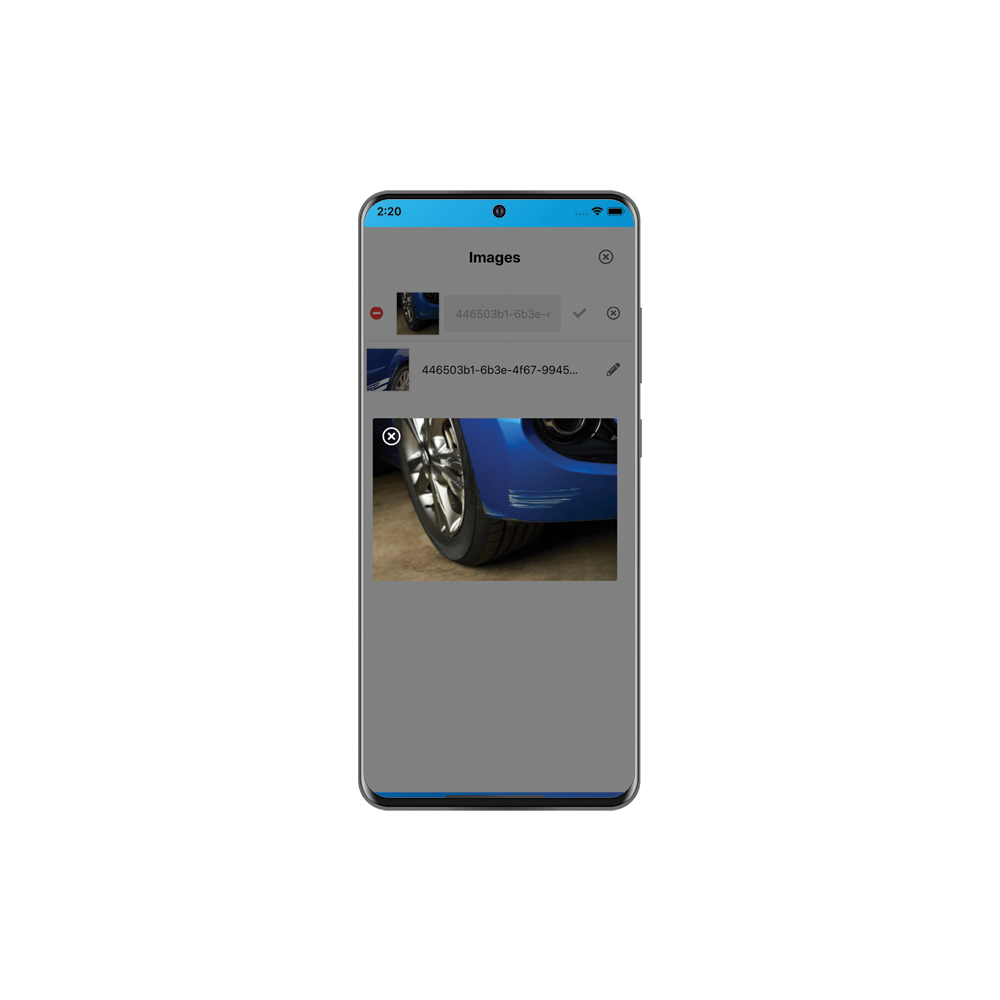 Collect detailed information, signatures and even pictures.