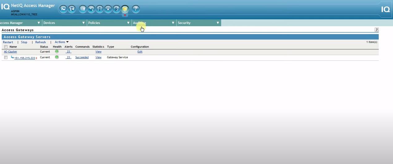 NetIQ Access Manager access gateway